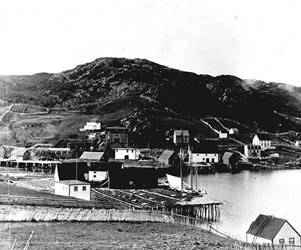 The Burin Harbour before the tsunami